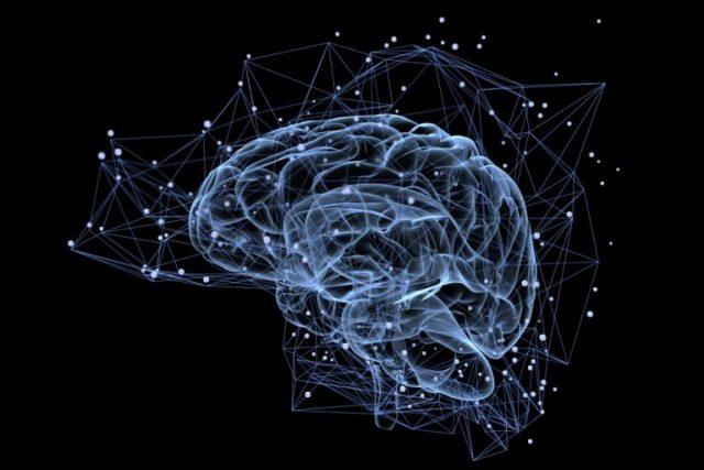 【不倫する人しない人の違い2】脳のしくみ